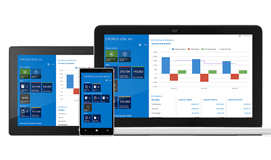 Microsoft Dynamics NAV - more capability and functionality